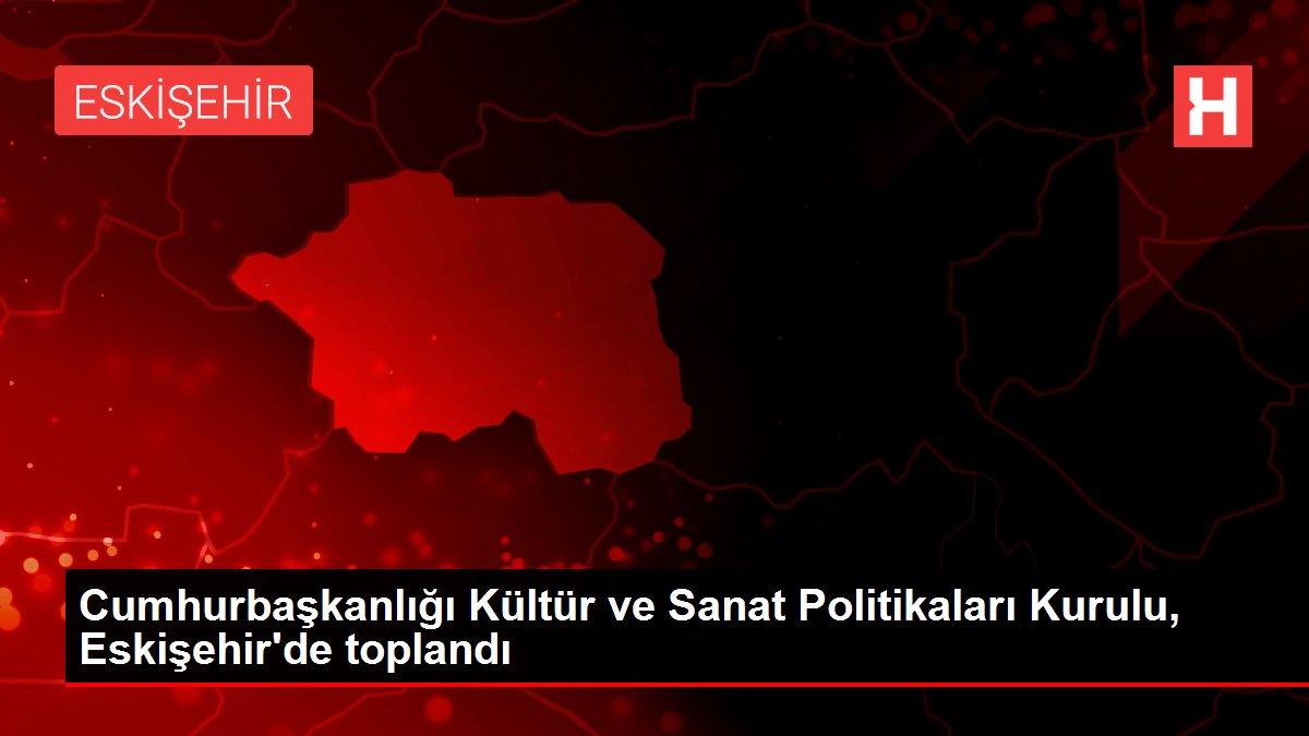 Cumhurbaşkanlığı Kültür ve Sanat Politikaları Kurulu, Eskişehir'de toplandı