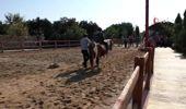 Özel çocuklar atla terapi ediliyor