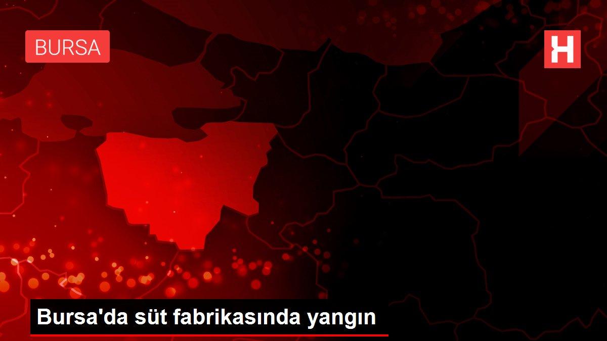 Bursa'da süt fabrikasında yangın