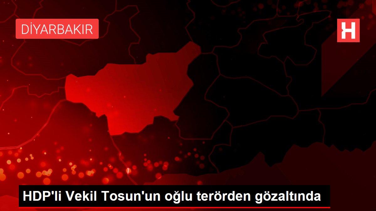 HDP'li Vekil Tosun'un oğlu terörden gözaltında