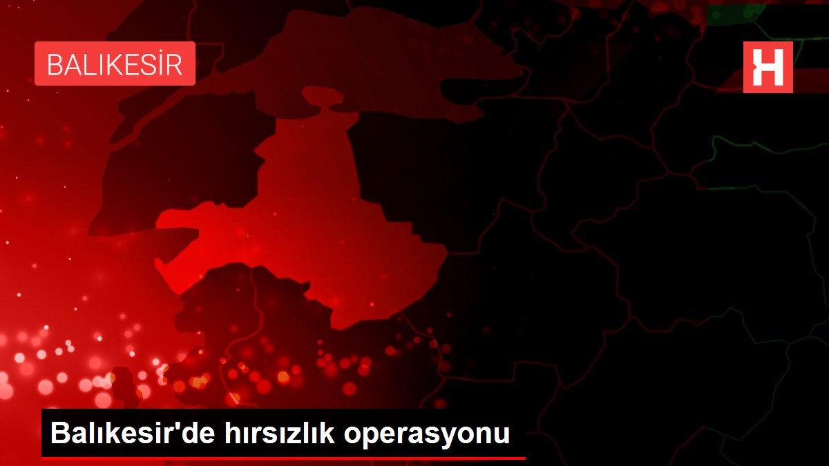 Balıkesir'de hırsızlık operasyonu