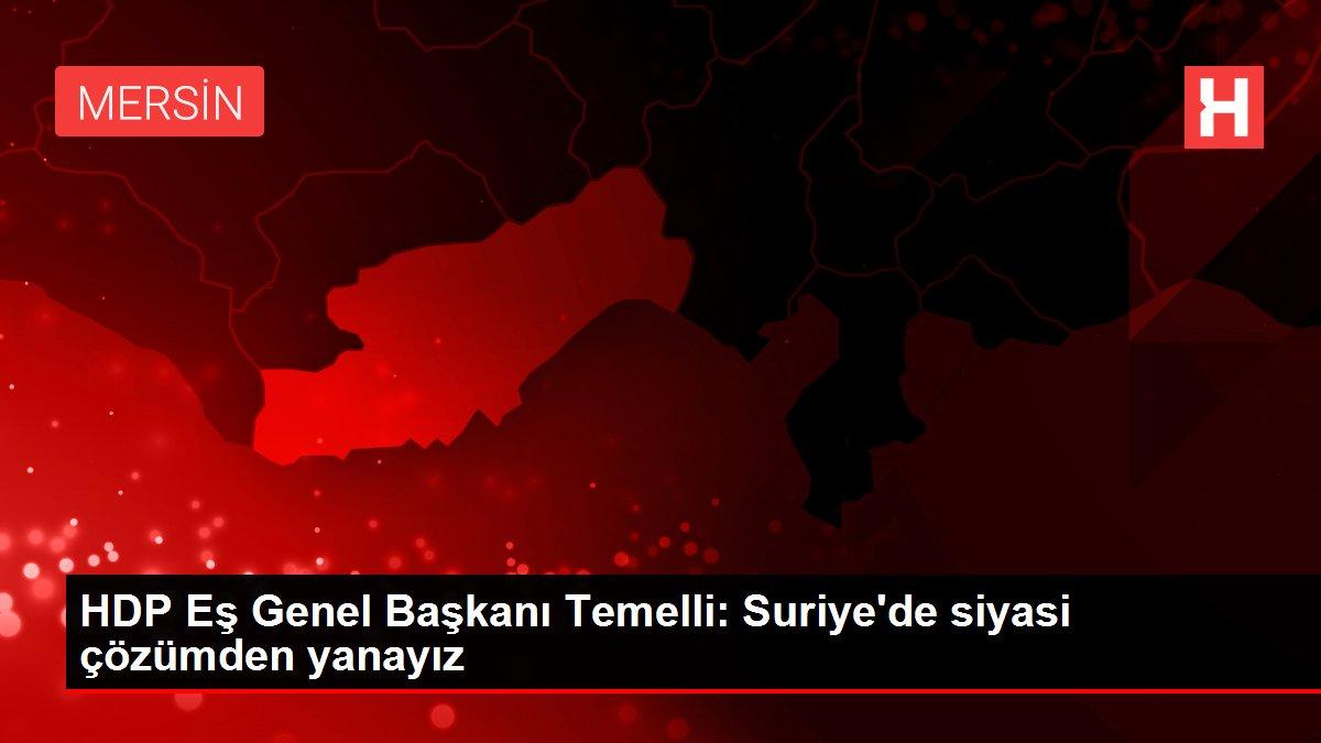 HDP Eş Genel Başkanı Temelli: Suriye'de siyasi çözümden yanayız