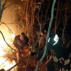 Kastamonu'daki orman yangını