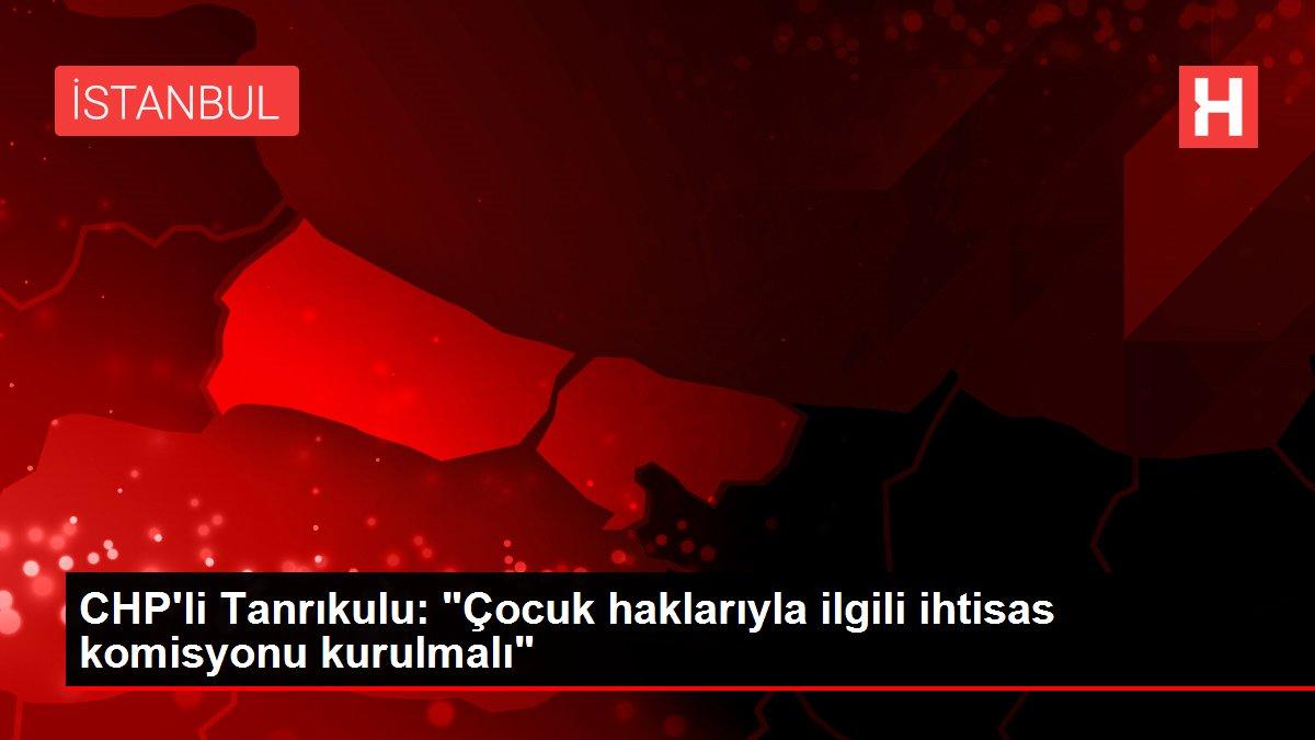 CHP'li Tanrıkulu: