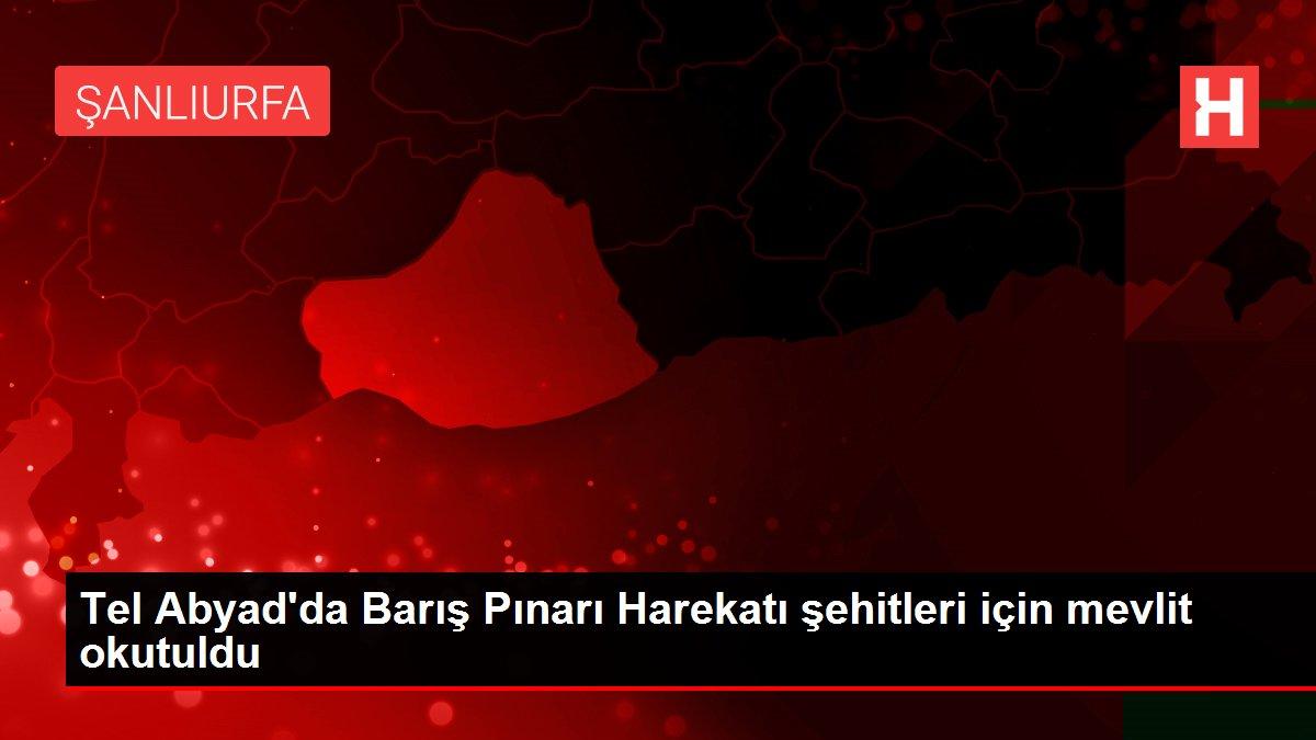 Tel Abyad'da Barış Pınarı Harekatı şehitleri için mevlit okutuldu