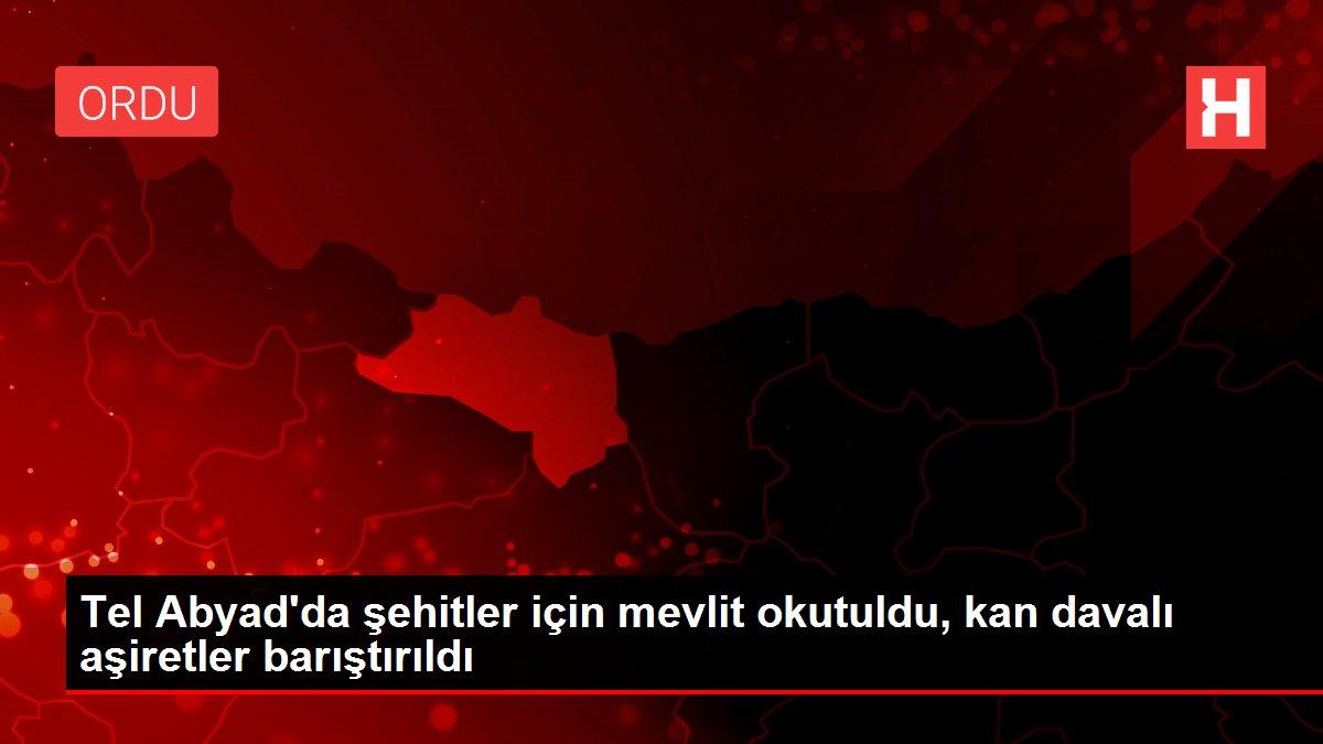 Tel Abyad'da şehitler için mevlit okutuldu, kan davalı aşiretler barıştırıldı
