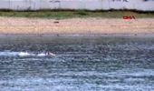 Spor manş denizi'ni geçen emre seven mersin-kıbrıs arasını solo olarak yüzen ilk kişi olmak...