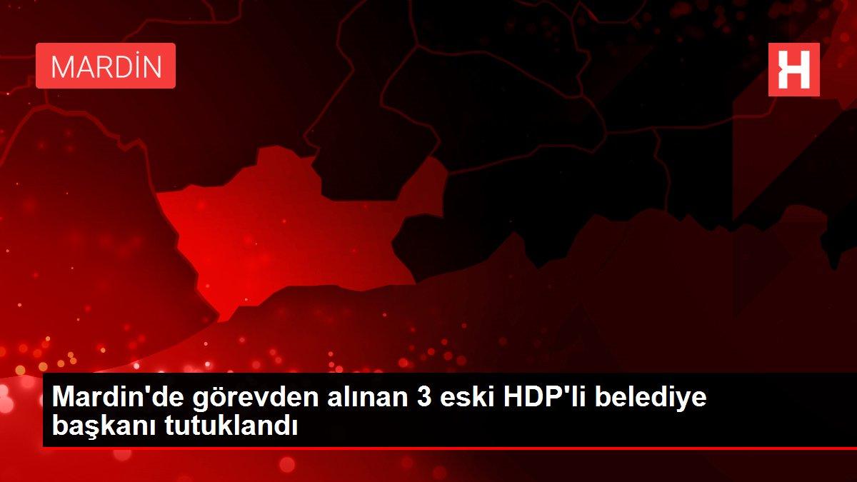 Mardin'de görevden alınan 3 eski HDP'li belediye başkanı tutuklandı