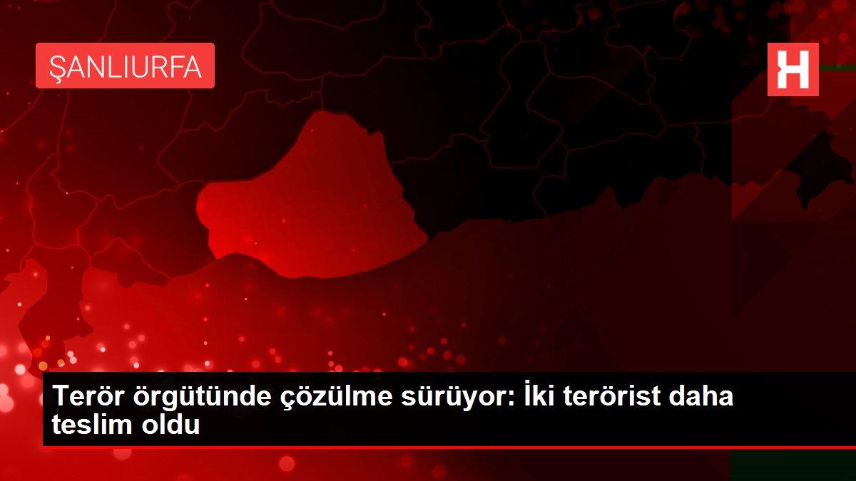Terör örgütünde çözülme sürüyor: İki terörist daha teslim oldu