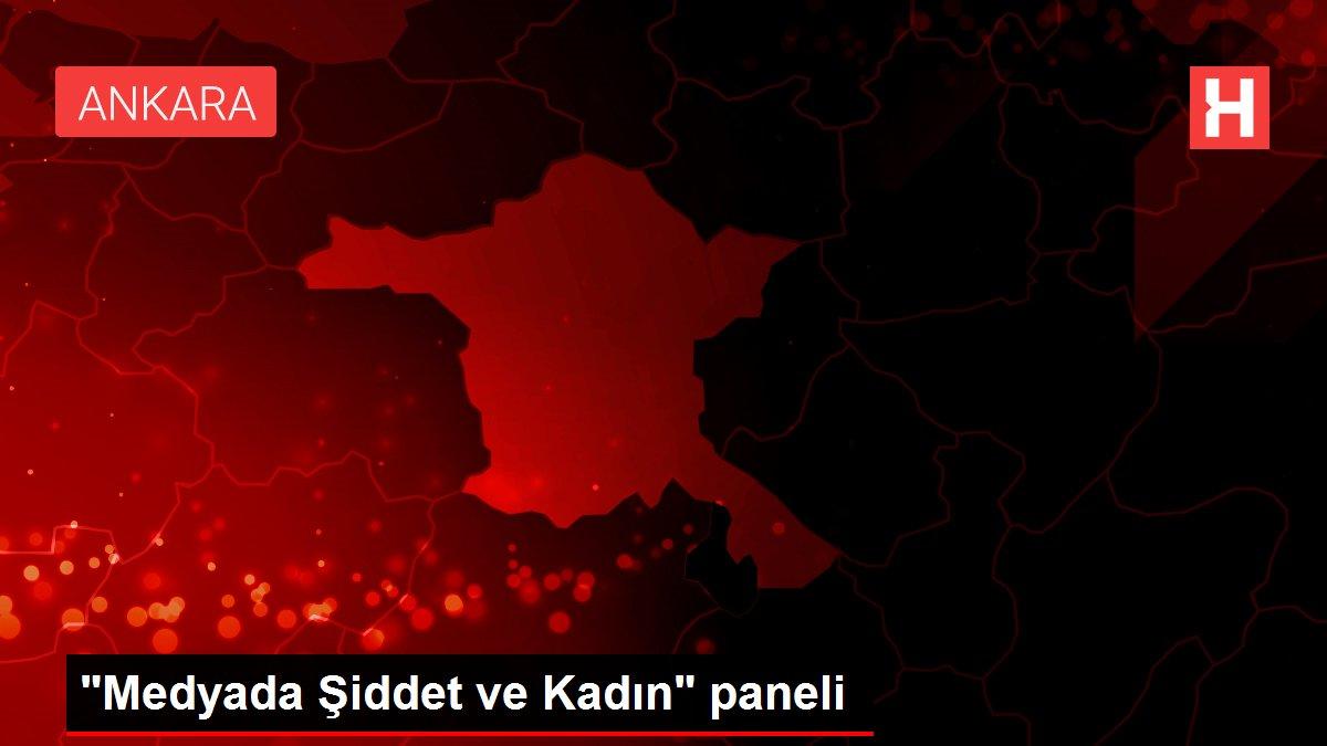 'Medyada Şiddet ve Kadın' paneli