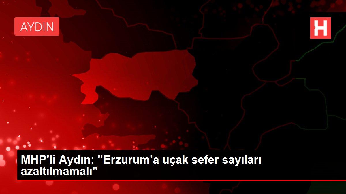 MHP'li Aydın: