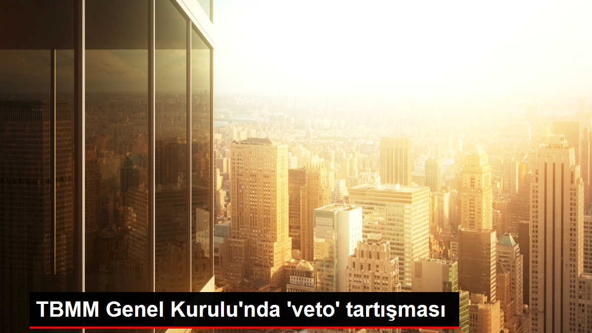 TBMM Genel Kurulu'nda 'veto' tartışması