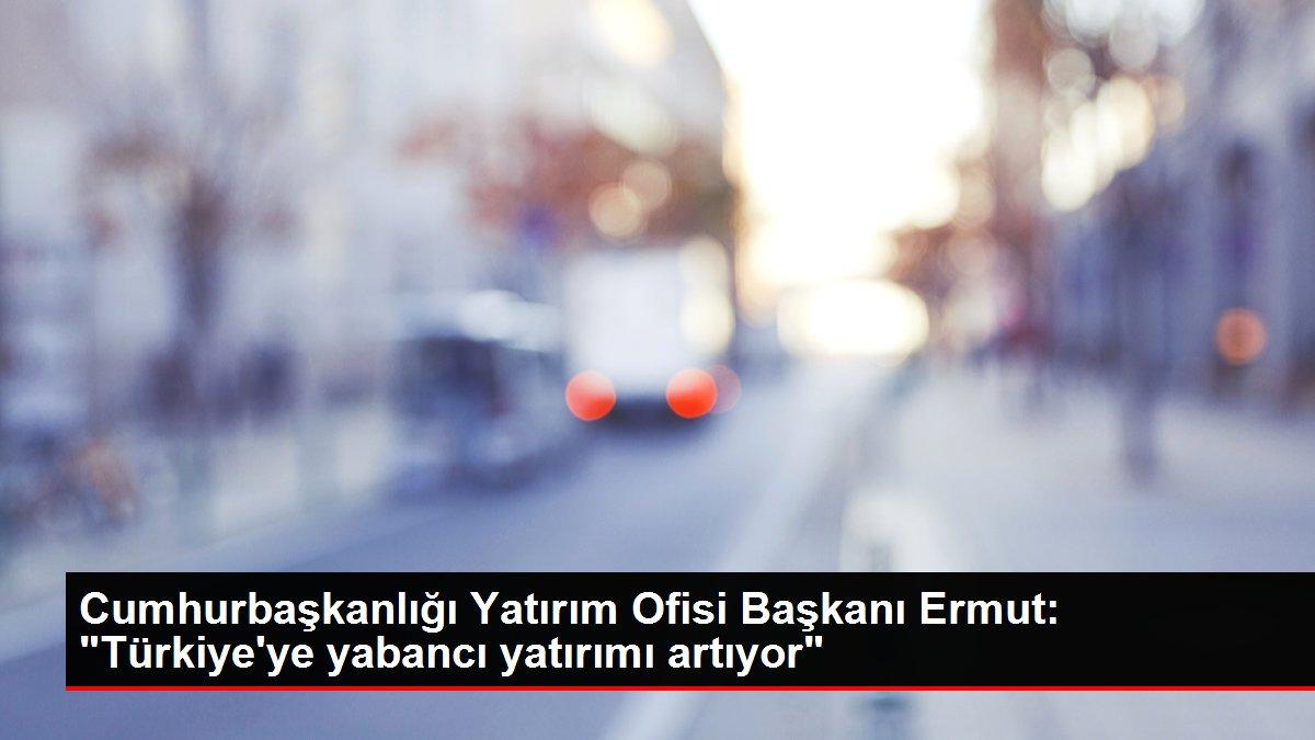 Cumhurbaşkanlığı Yatırım Ofisi Başkanı Ermut: