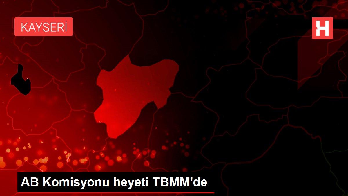 AB Komisyonu heyeti TBMM'de