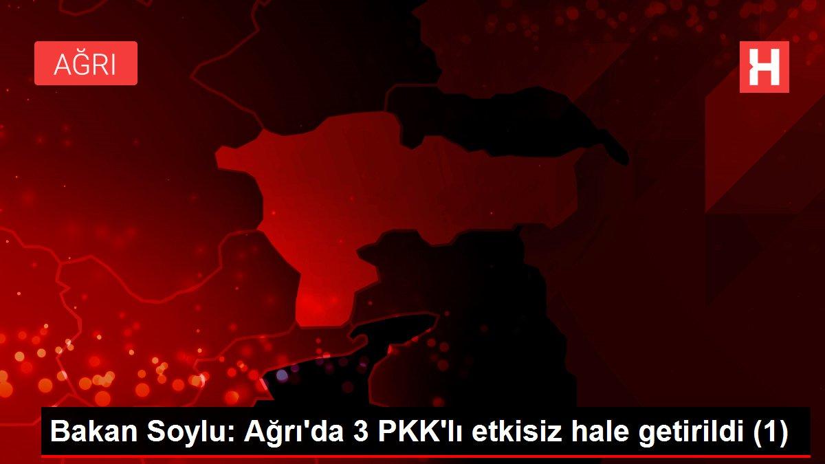 Bakan Soylu: Ağrı'da 3 PKK'lı etkisiz hale getirildi (1)