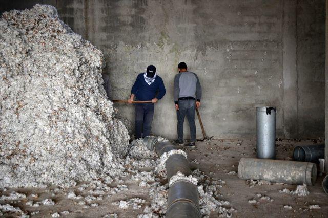 Ürettiği pamuk için fabrika kurdu şimdi bölgenin pamuğunu işliyor