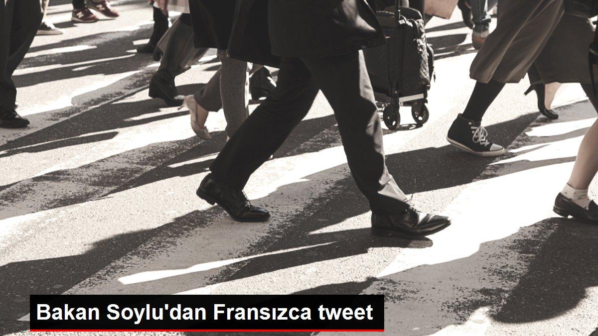 Bakan Soylu'dan Fransızca tweet