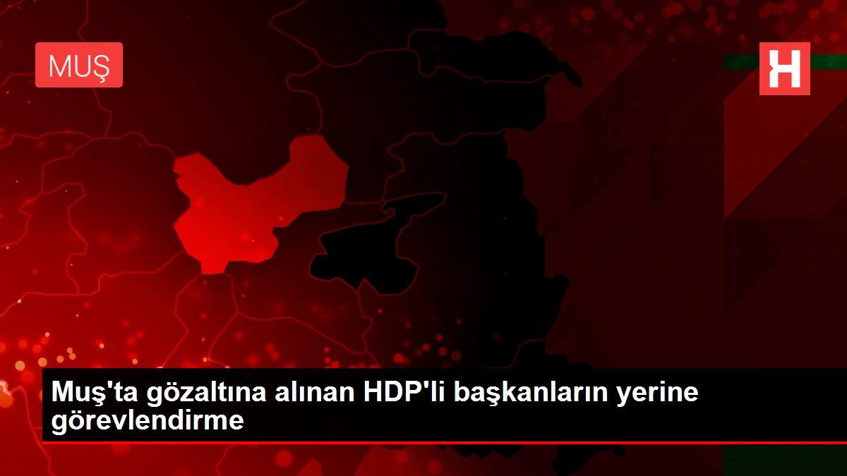 Muş'ta gözaltına alınan HDP'li başkanların yerine görevlendirme