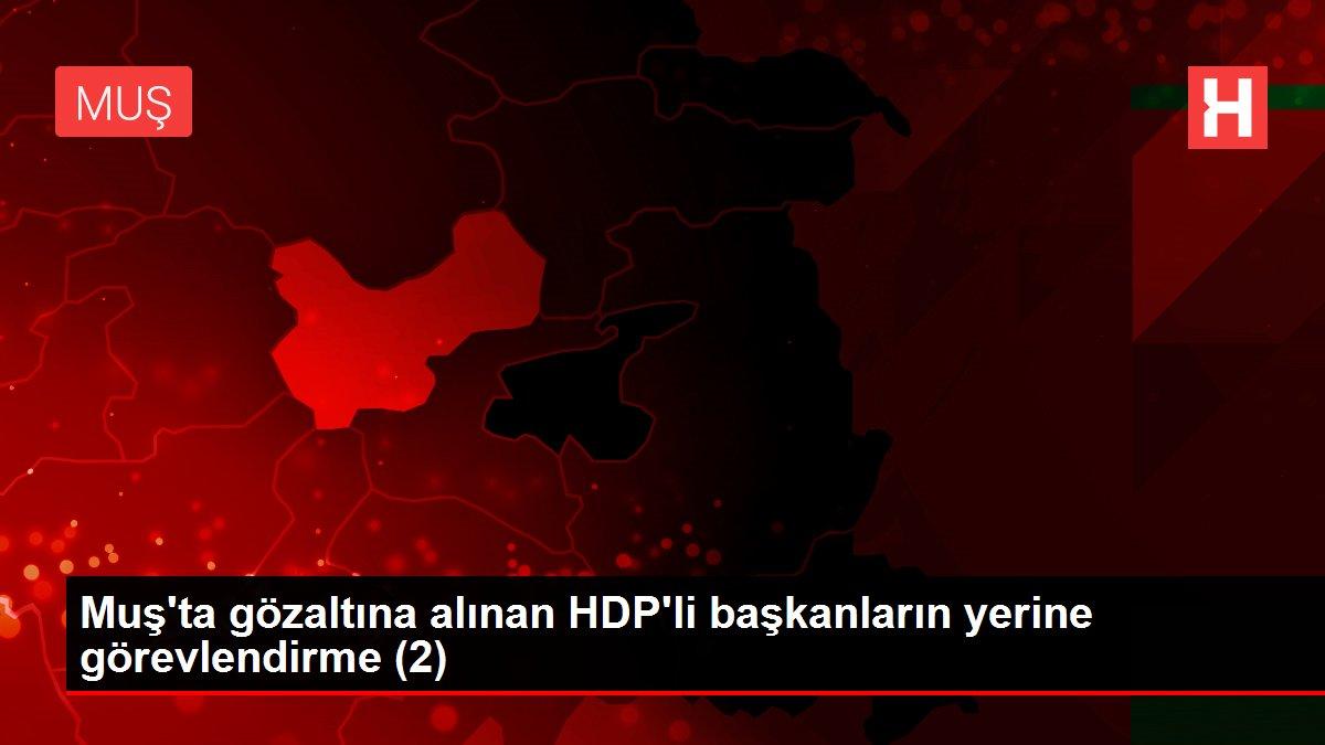 Muş'ta gözaltına alınan HDP'li başkanların yerine görevlendirme (2)