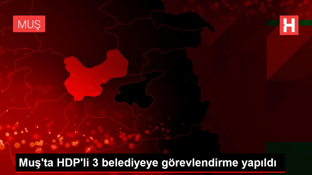 Muş'ta HDP'li 3 belediyeye görevlendirme yapıldı