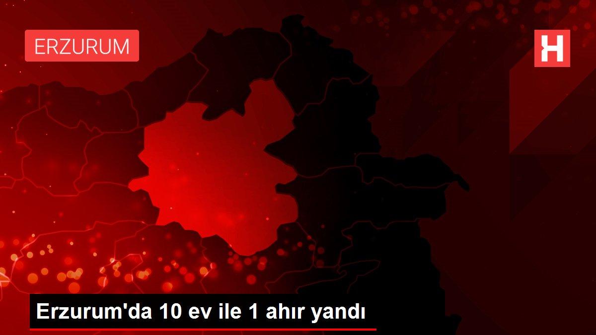 Erzurum'da 10 ev ile 1 ahır yandı
