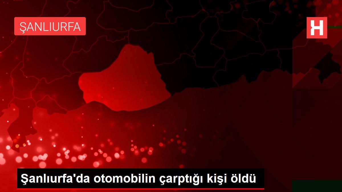 Şanlıurfa'da otomobilin çarptığı kişi öldü