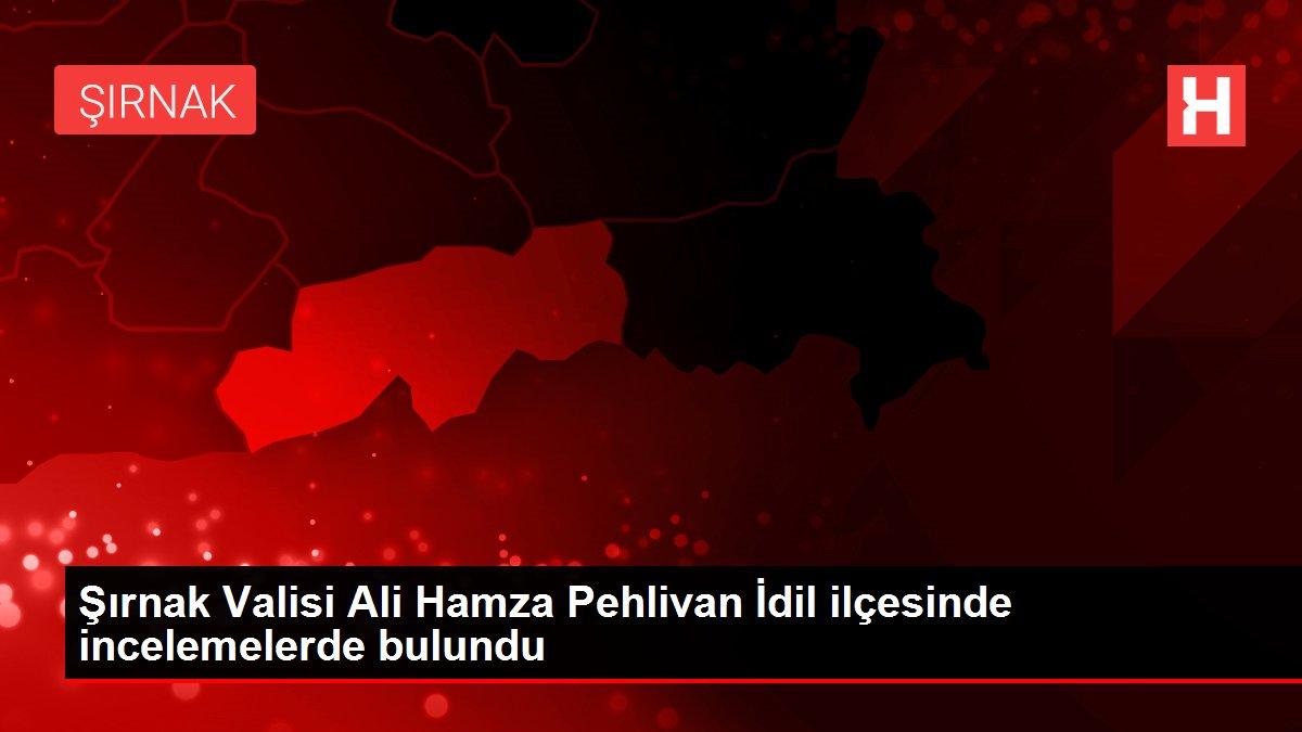 Şırnak Valisi Ali Hamza Pehlivan İdil ilçesinde incelemelerde bulundu