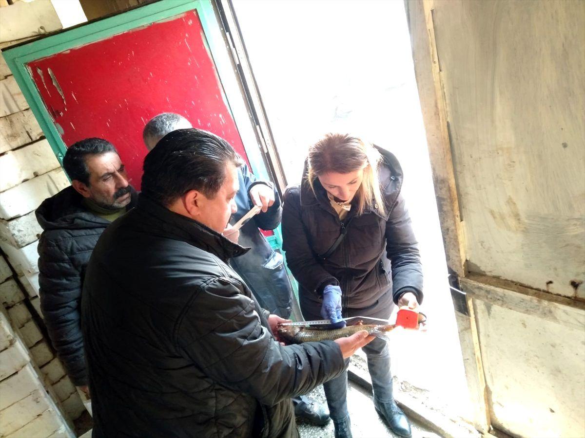 Altındağ'da balık depoları denetlendi