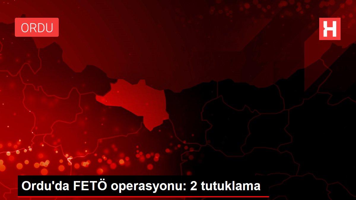 Ordu'da FETÖ operasyonu: 2 tutuklama