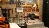 Bayrampaşa'da palalı saldırganın etkisiz hale getirildiği anların yeni görüntüleri ortaya çıktı