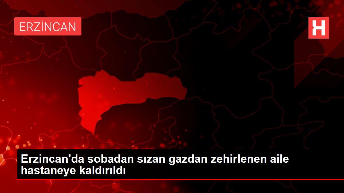 Erzincan'da sobadan sızan gazdan zehirlenen aile hastaneye kaldırıldı