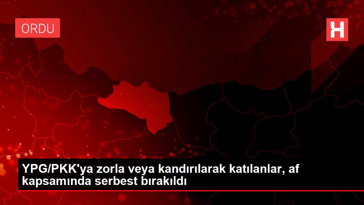YPG/PKK'ya zorla veya kandırılarak katılanlar, af kapsamında serbest bırakıldı
