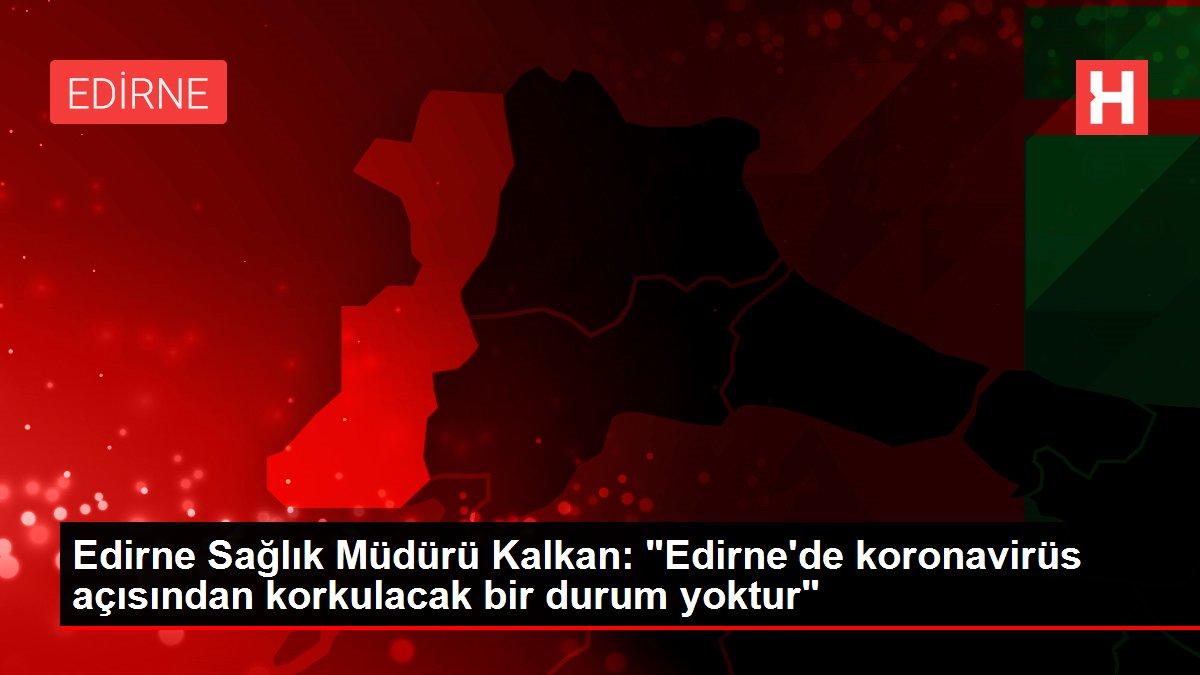 Edirne Sağlık Müdürü Kalkan: