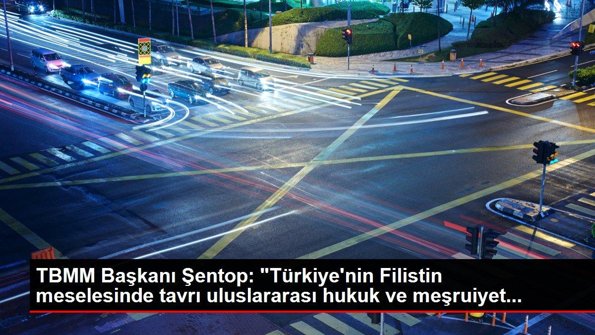 TBMM Başkanı Şentop: 'Türkiye'nin Filistin meselesinde tavrı uluslararası hukuk ve meşruiyet...