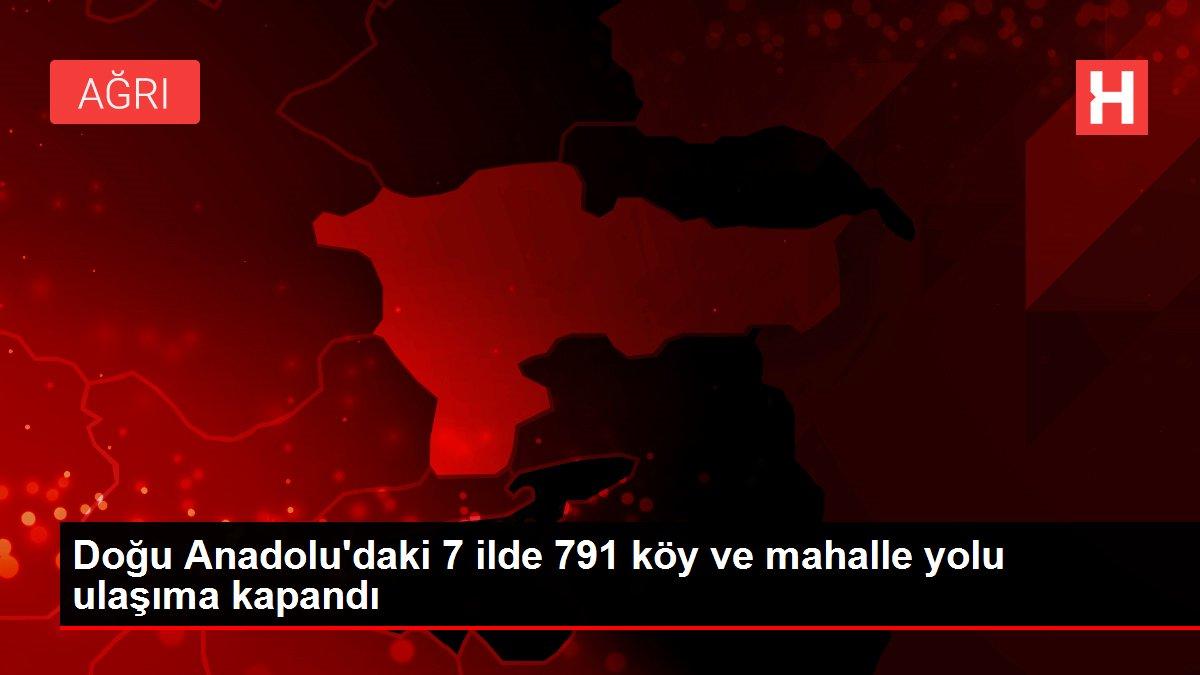 Doğu Anadolu'daki 7 ilde 791 köy ve mahalle yolu ulaşıma kapandı