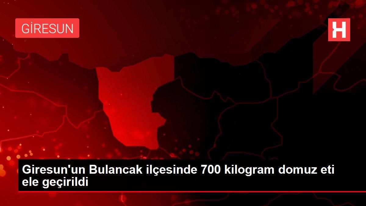 Giresun'un Bulancak ilçesinde 700 kilogram domuz eti ele geçirildi
