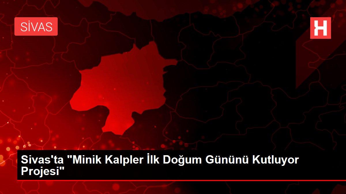 Sivas'ta Minik Kalpler İlk Doğum Gününü Kutluyor Projesi