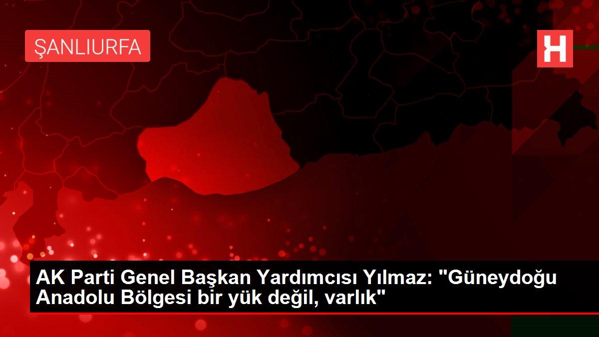 AK Parti Genel Başkan Yardımcısı Yılmaz: 'Güneydoğu Anadolu Bölgesi bir yük değil, varlık'