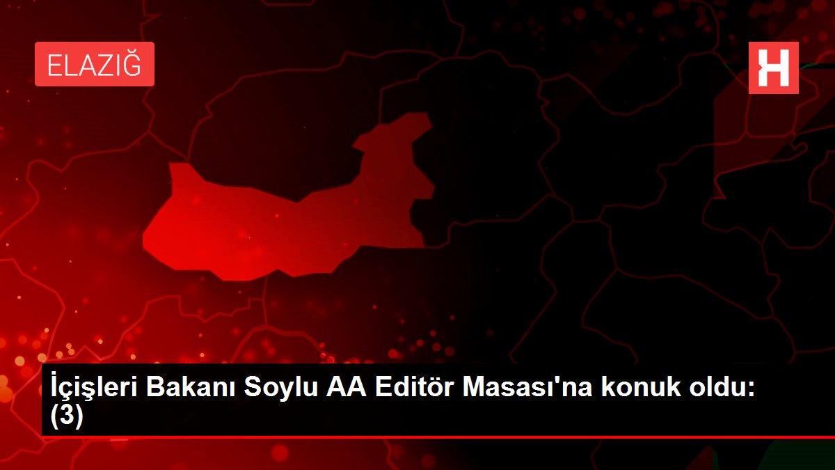 İçişleri Bakanı Soylu AA Editör Masası'na konuk oldu: (3)