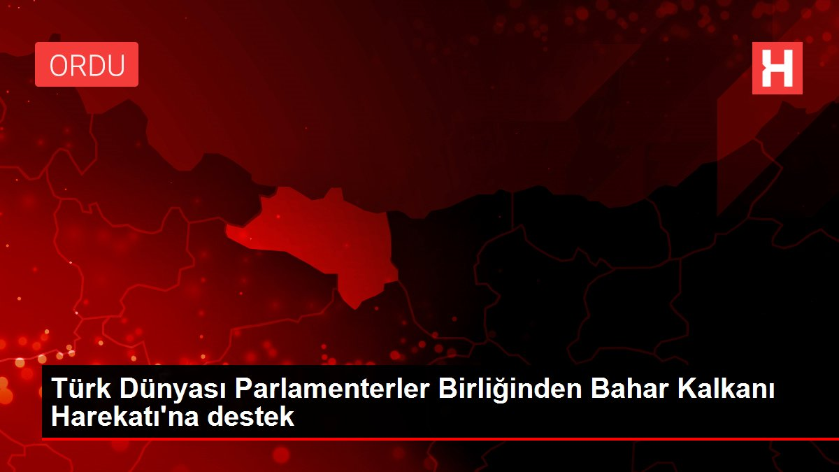 Türk Dünyası Parlamenterler Birliğinden Bahar Kalkanı Harekatı'na destek