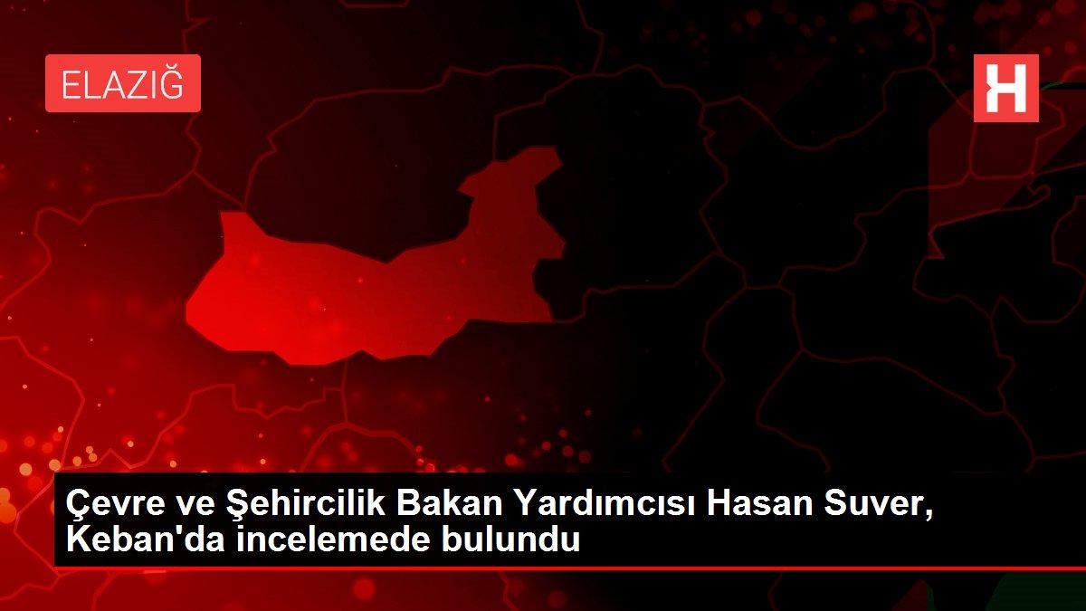 Çevre ve Şehircilik Bakan Yardımcısı Hasan Suver, Keban'da incelemede bulundu