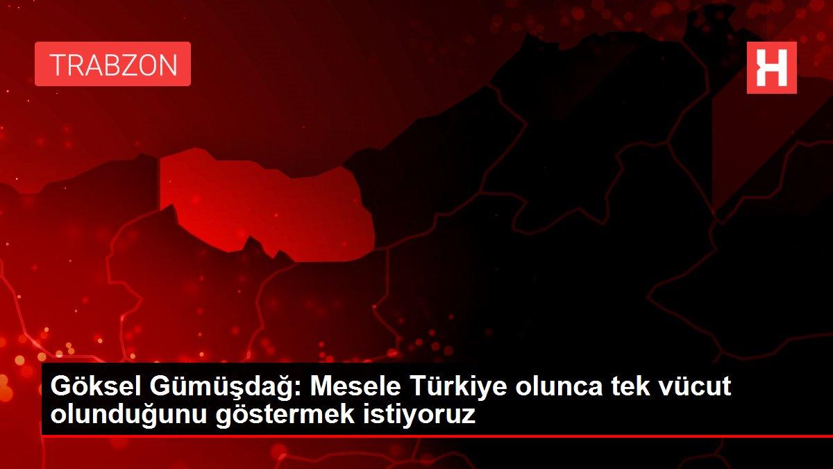 Göksel Gümüşdağ: Mesele Türkiye olunca tek vücut olunduğunu göstermek istiyoruz