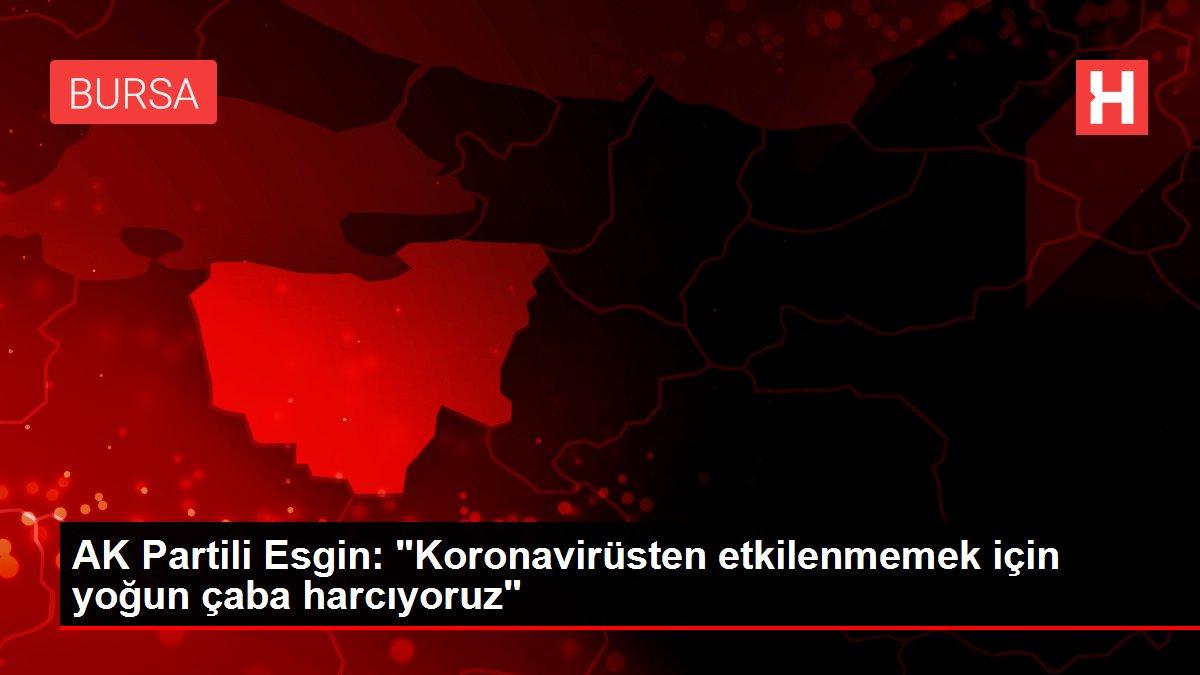 AK Partili Esgin: 'Koronavirüsten etkilenmemek için yoğun çaba harcıyoruz'