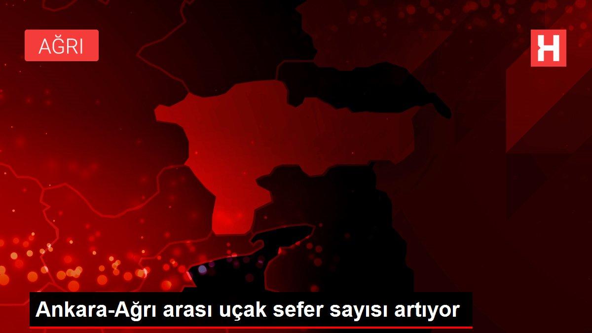 Ankara-Ağrı arası uçak sefer sayısı artıyor