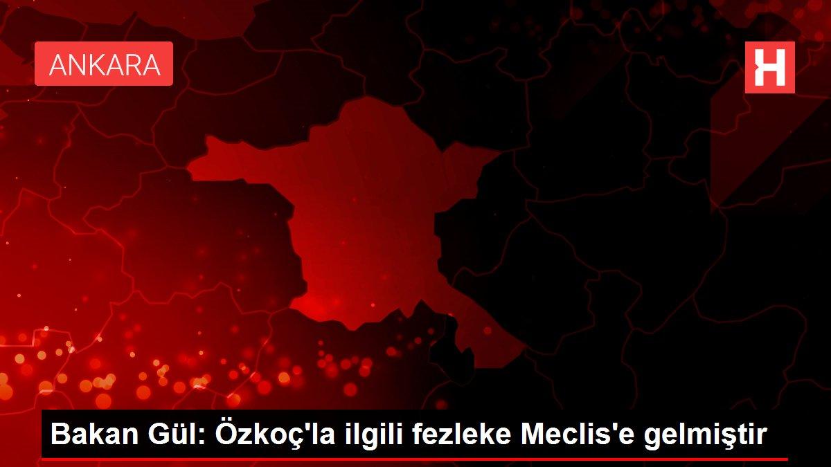Bakan Gül: Özkoç'la ilgili fezleke Meclis'e gelmiştir