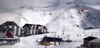 Palandöken Dağı: Hasta buzağıyı kızakla veterinere götürdü