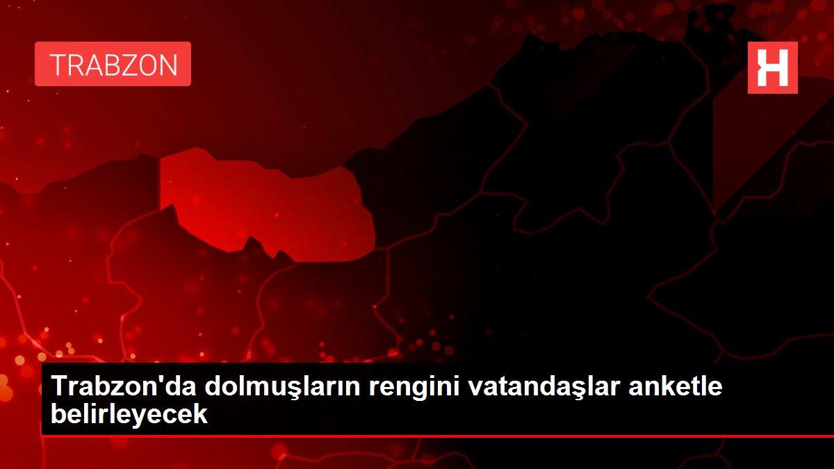 Trabzon'da dolmuşların rengini vatandaşlar anketle belirleyecek