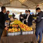 Gaziantep, Şanlıurfa, Kilis ve Malatya'da koronavirüs tedbirleri