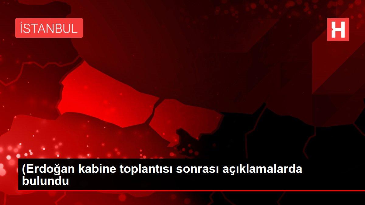 (Erdoğan kabine toplantısı sonrası açıklamalarda bulundu