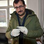 Doğanşehir'de uçamayan ebabil kuşu tedavi altına alındı